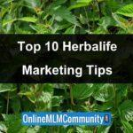 Top 10 Herbalife Marketing Tips and Success Tips