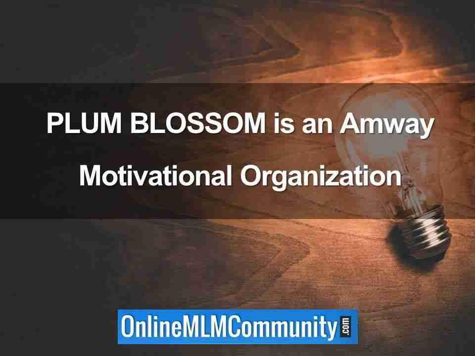 PLUM BLOSSOM is an Amway Motivational Organization