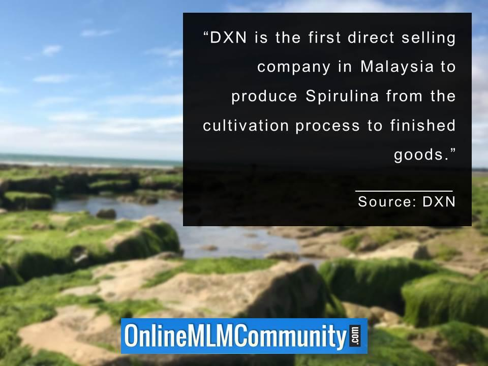DXN is the first direct selling company in Malaysia to produce Spirulina