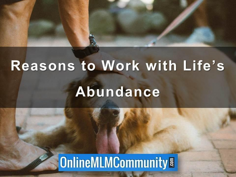 Reasons to Work with Life's Abundance