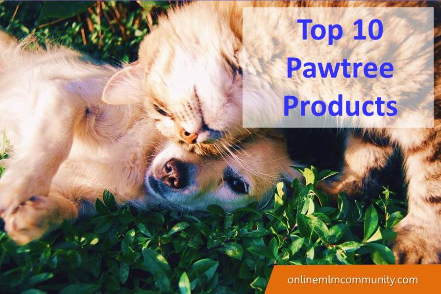 Top 10 Pawtree Products