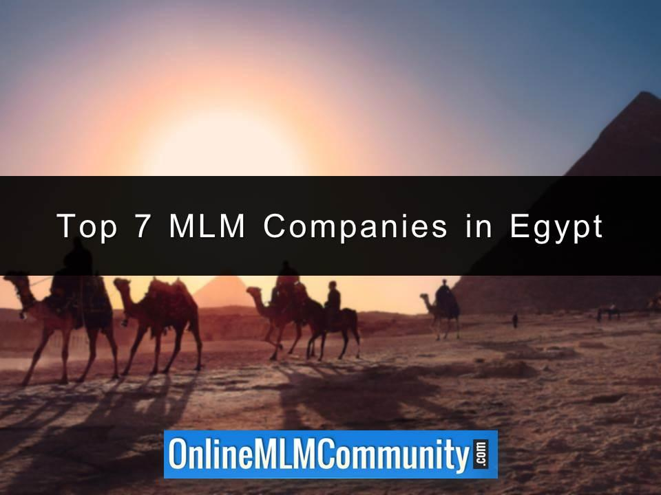 Top 7 MLM Companies in Egypt