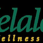 Melaleuca Compensation Plan: Top 10 Cool Facts
