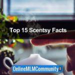 Top 15 Cool Scentsy Facts & Company Review