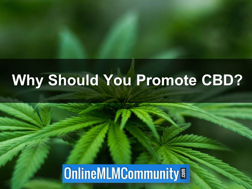 Why Should You Promote CBD