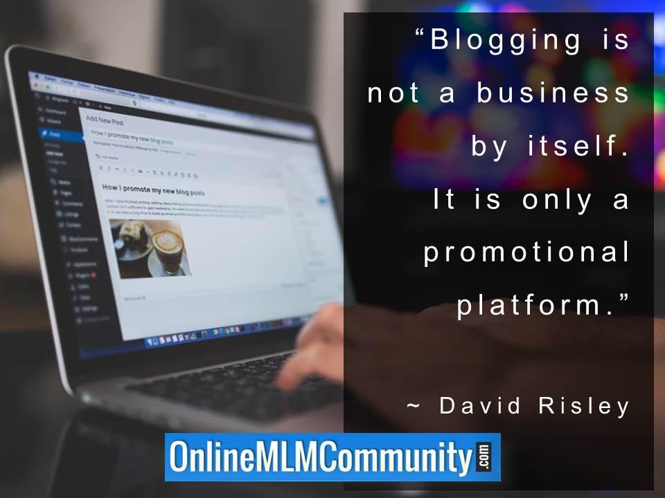 Blogging is not a business by itself. It is only a promotional platform.